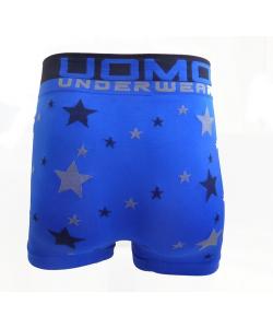 Boxer étoile